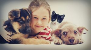 Safety with Children and Pets